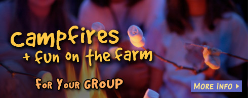 Campfires for groups